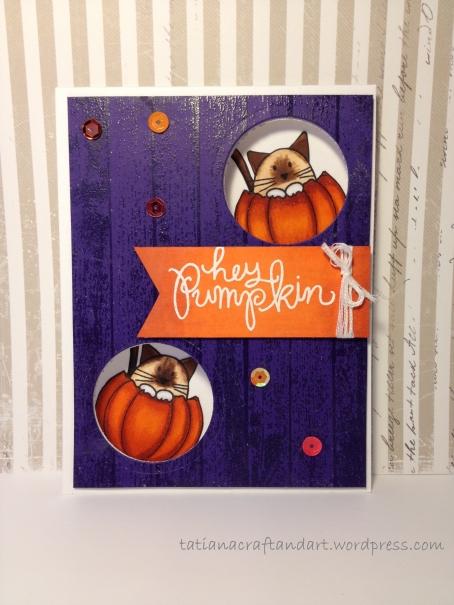 Hey Pumpkin 2014 (4)