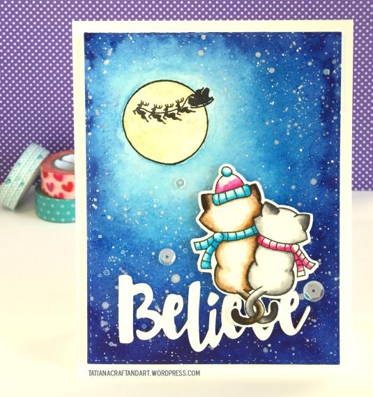 nnd_believe-2016-1