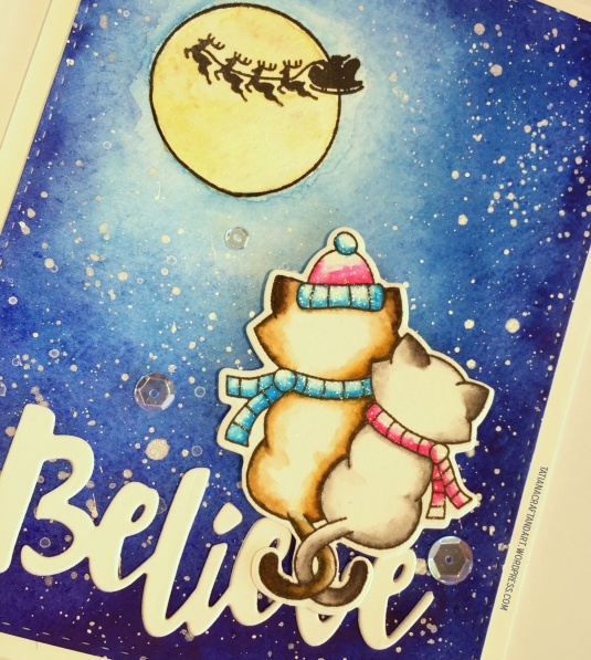 nnd_believe-2016-3