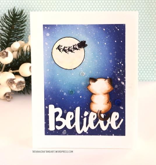 nnd_believe-ii-2016-1