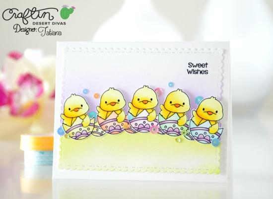 cdd_spring-chick-1