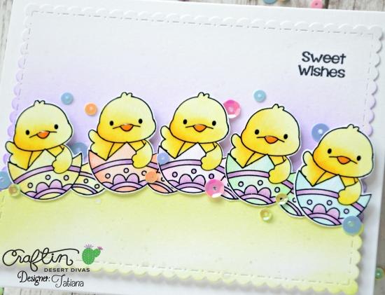 cdd_spring-chick-3