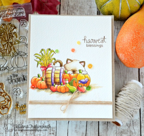 Harvest Blessings #handmade card by Tatiana Trafimovich #tatianacraftandart - Autumn Newton stamp set by Newton's Nook Designs #newtonsnook