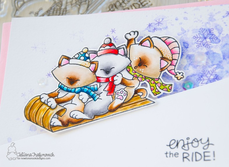 Enjoy The Ride #handmade card by Tatiana Trafimovich #tatianacraftandart - Newton's Toggoban stamp set by Newton's Nook Designs #newtonsnook