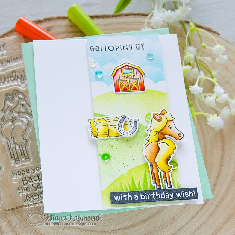 Galloping By With A Birthday Wish #handmade card by Tatiana Trafimovich #tatianacraftandart - Neigh stamp set by Newton's Nook Designs #newtonsnook